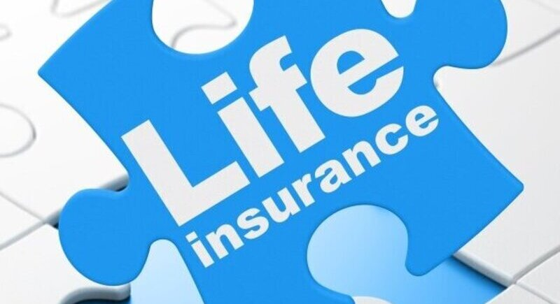 Interactive life insurance is gaining popularity image