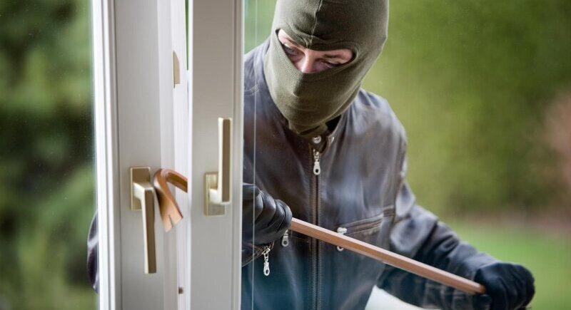 Learn how to protect your home from unwanted visitors image