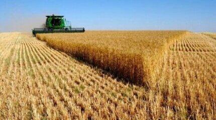 Само 1% от земеделците в България застраховат земеделските си култури и реколтата от тях image