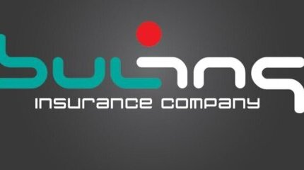Бул Инс с ново лого image