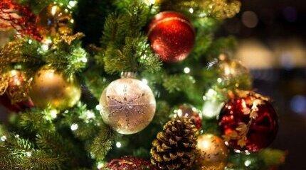 Пет начина да предпазим дома си от крадци по време на Коледните и Новогодишни празници image