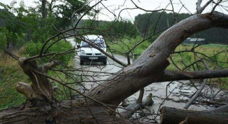 Тропическа буря нанесе щети в Монтана image